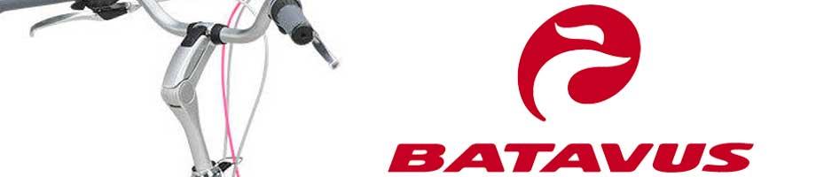 Stuurpennen Batavus