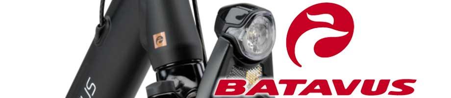 Verlichting Batavus